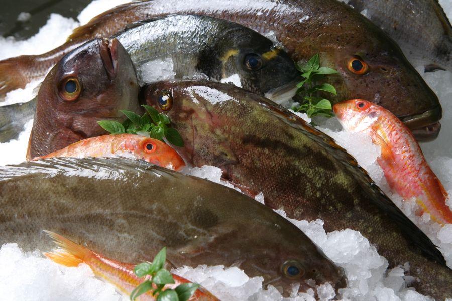 Πώς μπορούμε να ξεχωρίσουμε αν το ψάρι είναι φρέσκο;