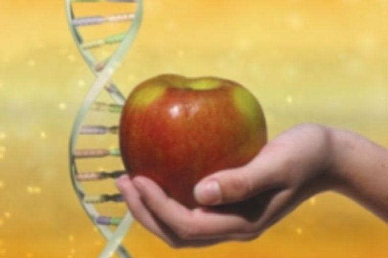 Ταΐστε σωστά τα γονίδια σας για να είστε υγιείς...